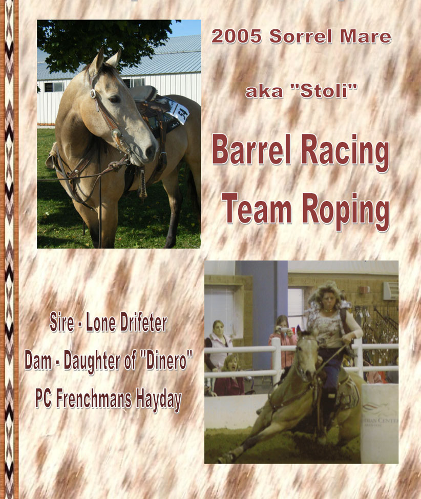 "MP Topofthewoodpile - ""Stoli"" - 2005 Sorrel Mare - Barrel Racing - Team Roping - Sire Lone Drifter - Dam Daughter of ""Dinero"" - PC Frenchmans Hayday"